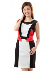 Color Block Panelled Shift Dress