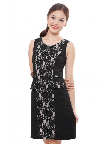 http://www.divalavie.com/180-1192-thickbox/lace-sheath-dress.jpg
