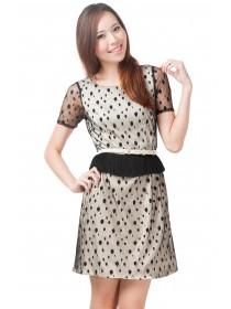 Polka Dots Mesh Shift Dress