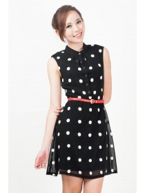 Embroidered Polka Dots Chiffon Dress