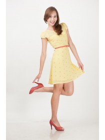Embroidered Prints Yellow Chiffon Dress
