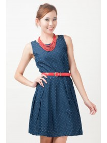 Odette Denim Belted Dress
