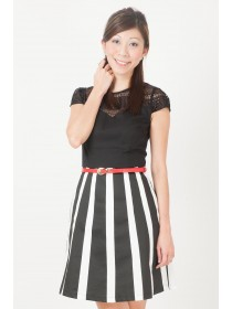Patterned Mesh Two Tone Dress