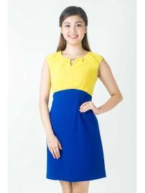 Flattering Color Block Crepe Dress