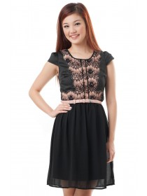 Lace Applique Mesh Dress